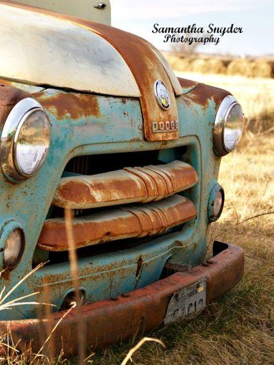 Dodge Oldpickup Ranch Truck (null)Rusty Transportation