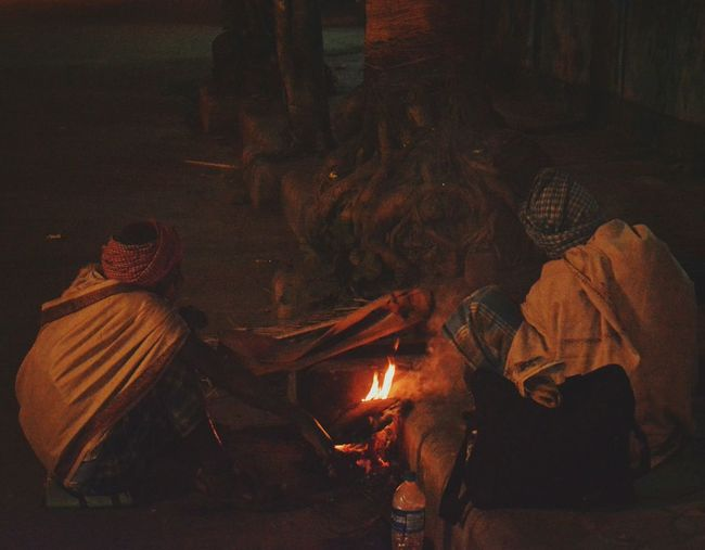 Men sitting by bonfire and tree at night
