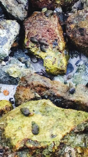 Full Frame Rock - Object Multi Colored Backgrounds Textured  Lichen No People Close-up Day Outdoors Water Nature