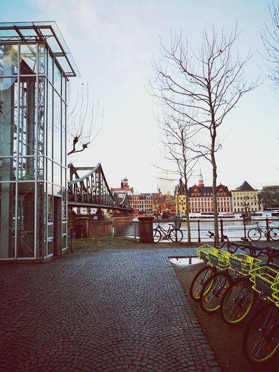 Winter Frankfurt Travellingtheworld Travel Destinations Vacations City Architecture EyeEmNewHere
