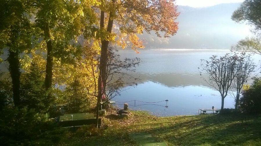 Lakeside idylla Zywieckie Jezioro żywieckie Tree Water Lake Autumn Leaf Fog Reflection Sky Landscape Lakeshore Idyllic First Eyeem Photo