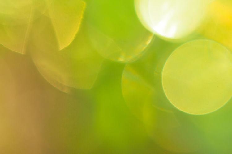 Full frame shot of yellow leaf