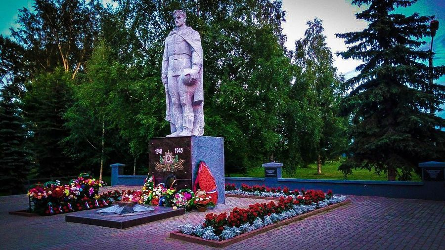 чавечный огнь памятник Tree Memorial Park - Man Made Space Christmas Decoration Growth Nature Outdoors Day No People
