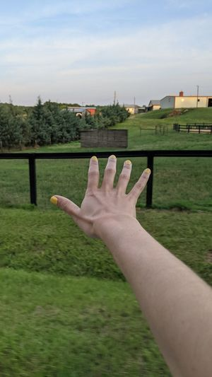 Cropped image of person hand on grass against sky