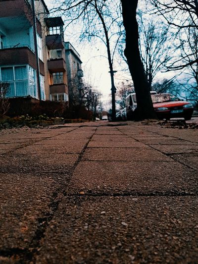 Streetphotography Street Asphalt Urban Cityscape Pattern City Berlin Urbexphotography Urbanphotography Berlinstyle Architecture Built Structure Building Exterior City Outdoors Tree Day No People