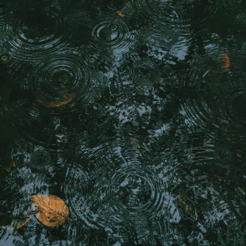 Rippled Ripples In The Water Water Leaf Rain Full Frame Backgrounds Beauty In Nature Beauty In Nature Environment