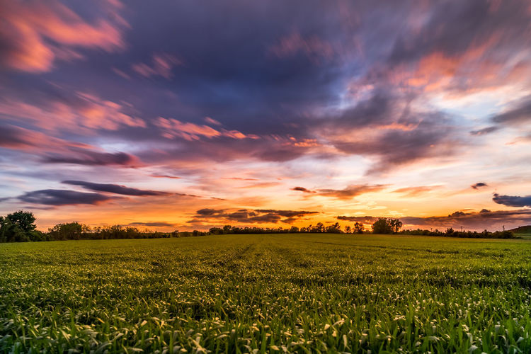 Scenic view of grassy landscape against cloudy sky during sunset