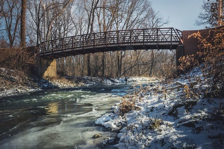Arbuckle Park Outdoors Nature Winter