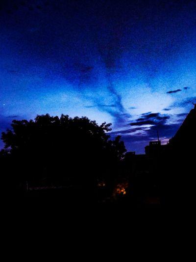 ♥️ EyeEm Selects Shotonphone EyeEmNewHere EyeEm Gallery Eyeemphotography HUAWEI Photo Award: After Dark EyeEmBestPics Astronomy Tree Silhouette Blue Sky Be Brave