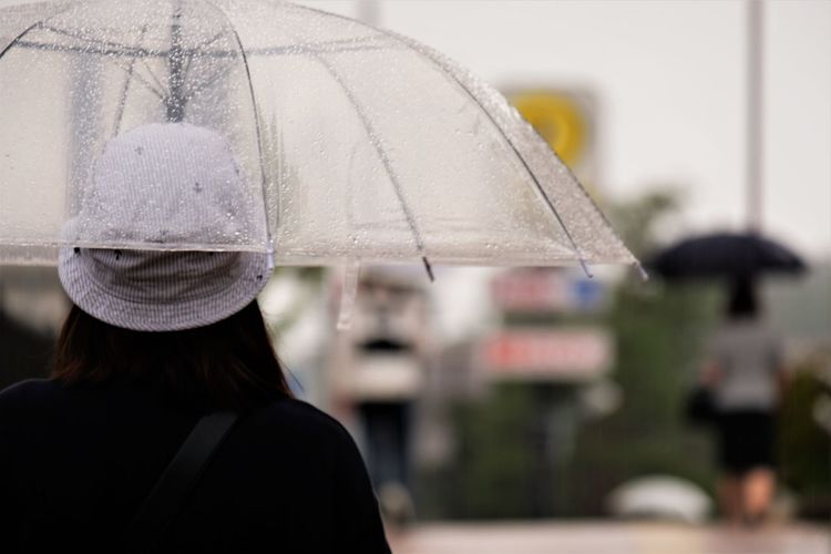 Rear view of woman with umbrella during rainy season