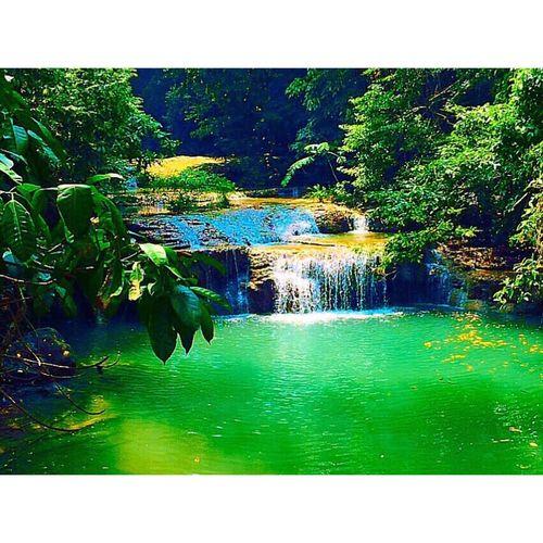ธรรมชาติ...ซับความรู้สึก🍃 First Eyeem Photo