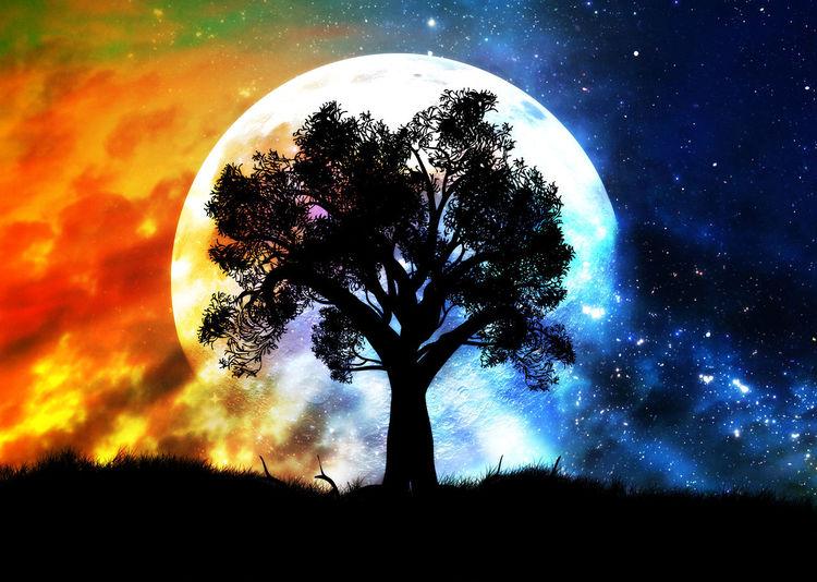 Night Moon Sky