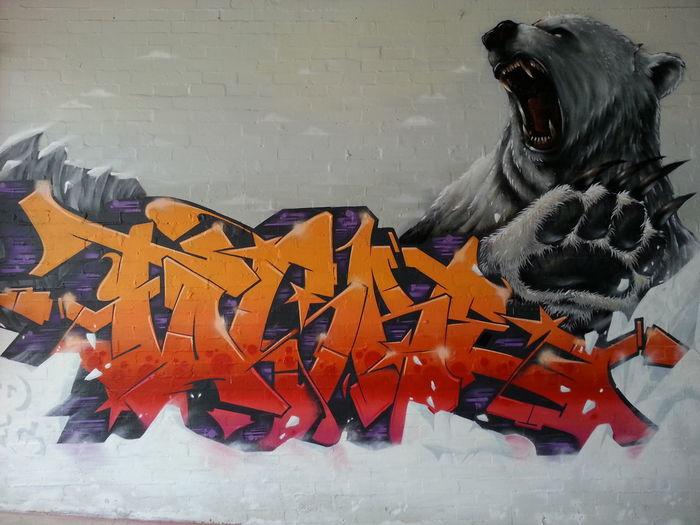 Cam Scale Pheds Polarbear Streetart