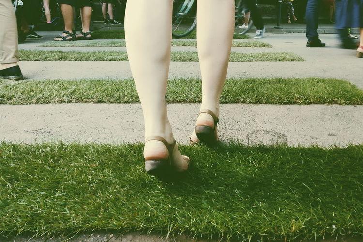 Legs Calf