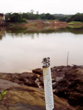 Smoking Causes Cancer💀 Close-up Water Holding Nature Outdoors Day Sky Smoke Cigerette Smoking Dam Causescancer Youcamedit Sale Photoforsale EyeEm Best Shots GoldFlake