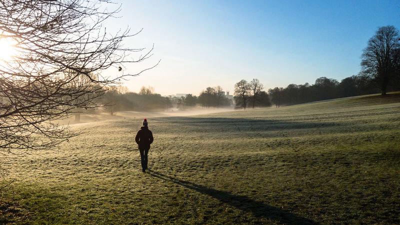 Darley Park Winter Beauty In Nature Clear Sky Day Field Grass Landscape Mist Nature One Person Outdoors Sky Tree