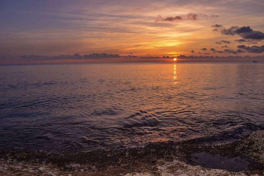 Nature On Your Doorstep Sunset Elba