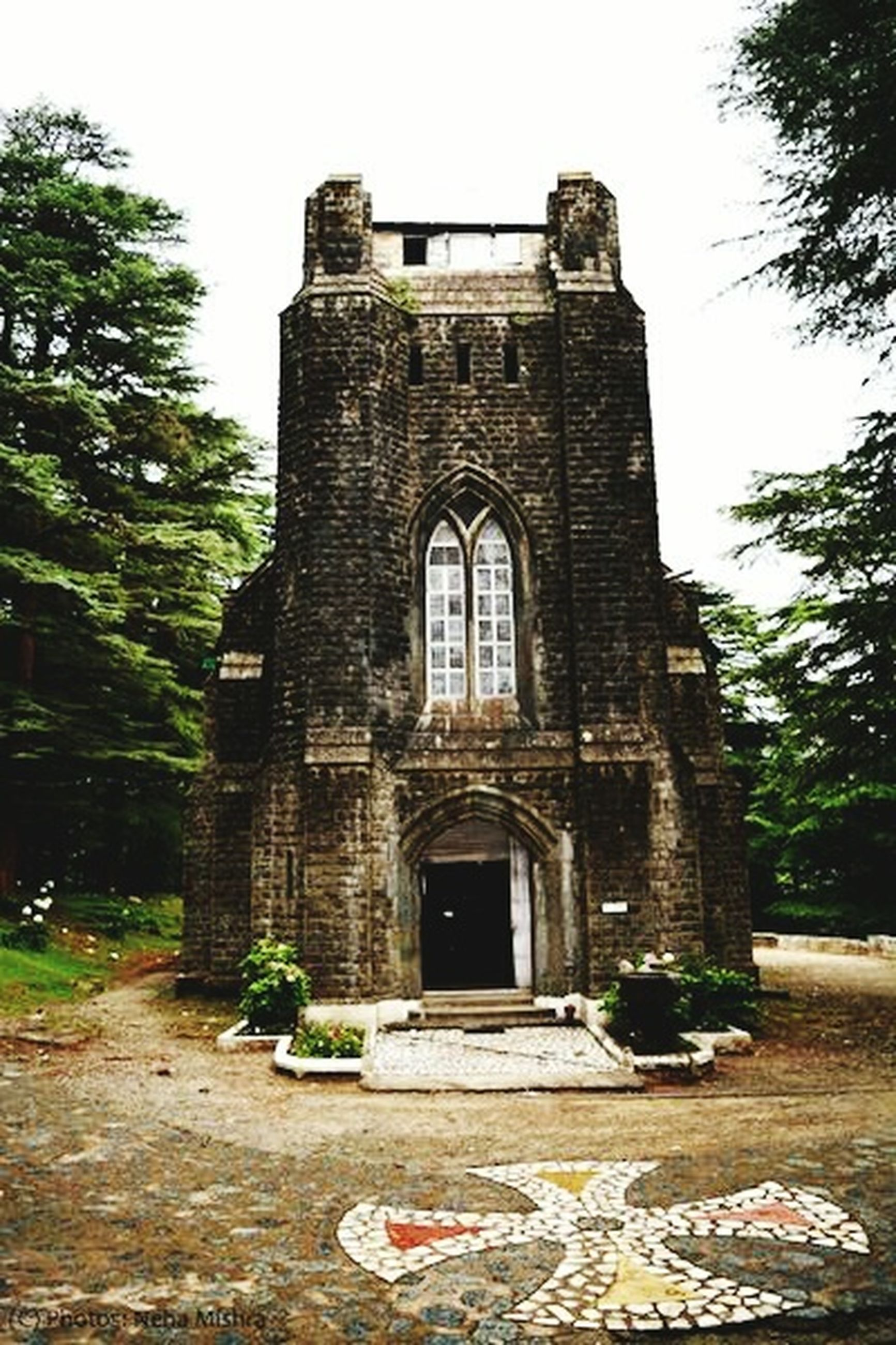 architecture, built structure, building exterior, tree, history, clear sky, place of worship, religion, entrance, low angle view, facade, old, spirituality, arch, church, day, sky, steps, outdoors
