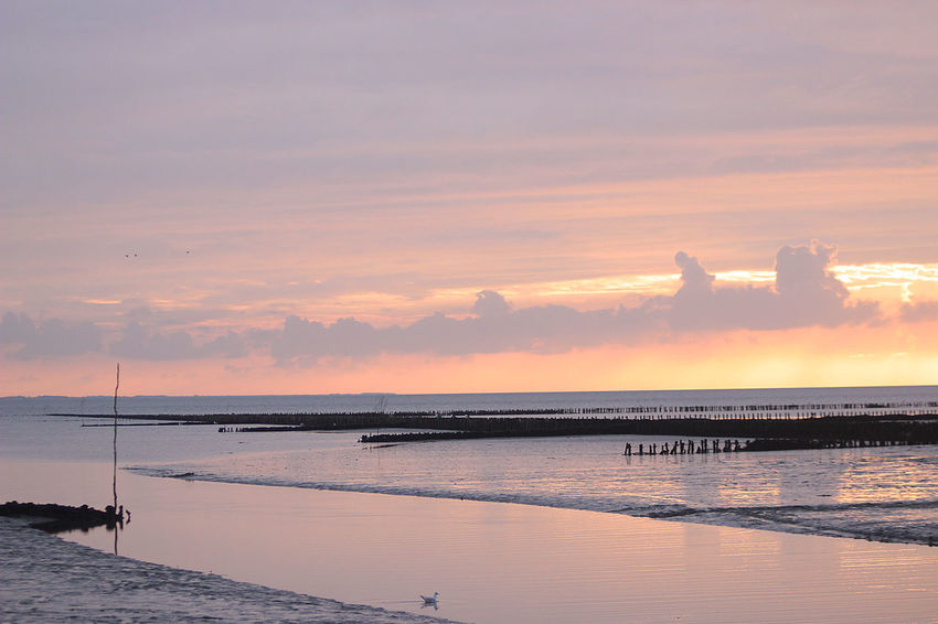 Beach Boardwalk Clouds Golden Dea Gra Grass Mudflat North Sea Sea Sundown Tideland Wadden Sea