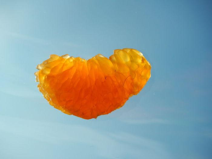 Close-up Day Food Freshness Fruit Macro Mandarine Nature Sky Tangerine