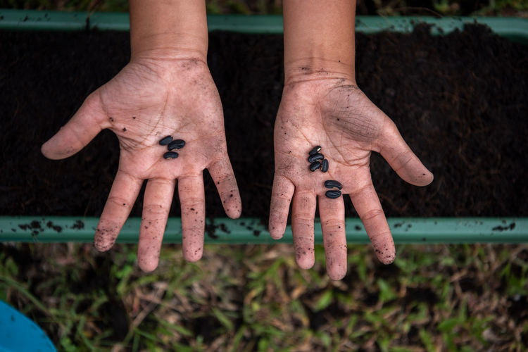 Close-up of human hand on field