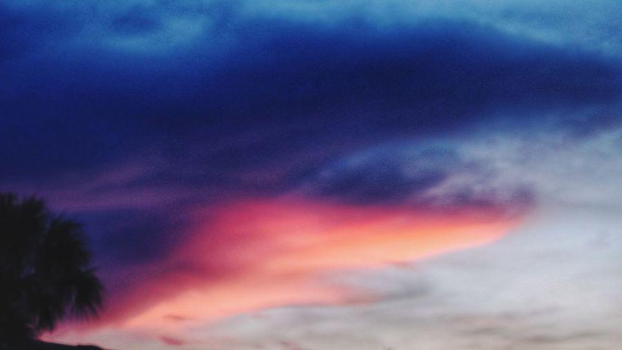 Vivid Colors in