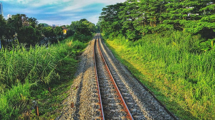 railway Train Track Locomotive Cargo Day The Way Forward Sky Outdoors Nature Tree No People Green Color Growth Beauty In Nature Grass