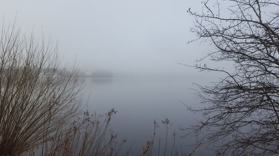 Alster Außenalster Germany🇩🇪 Hamburg Hamburg City January January 2018 Winter Winter Fog Außenalster Beauty In Nature Day Foggy Foggy Day Germany Lake Lake View Mystical Atmosphere Nature No People Outdoors Peaceful Peaceful And Quiet Silence Of Nature Tranquility Water Tranquil Scene Scenics Reflection Bare Tree