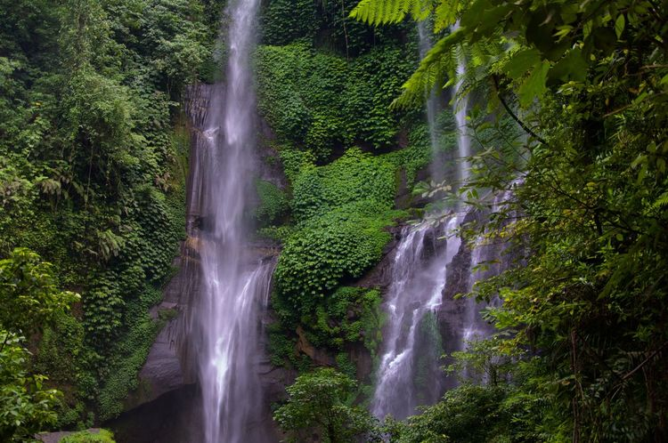 Waterfall Bali Sekumpul  Enjoying Life Taking Photos EyeEm Best Shots EyeEmBestPics Eye4photography  EyeEm Best Edits EyeEm Nature Lover Traveling Travel Landscape Naturelovers Nature_collection Nature Photography The Great Outdoors With Adobe Two Is Better Than One
