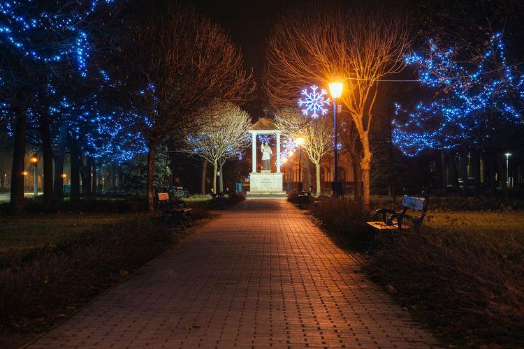 Walkway leading towards statue at night