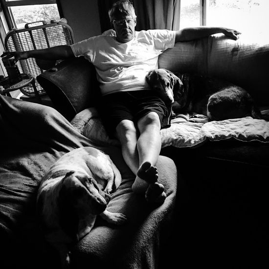 Daddy and the boys Check This Out Hanging Out Relaxing Enjoying Life Blackandwhite Photography Myseniorhound Ilovebassethounds Bassetworld Bassetmoments Bassetphotography Posing For The Camera Relaxedand Happy Iphonephotography Blackandwhiteportraits
