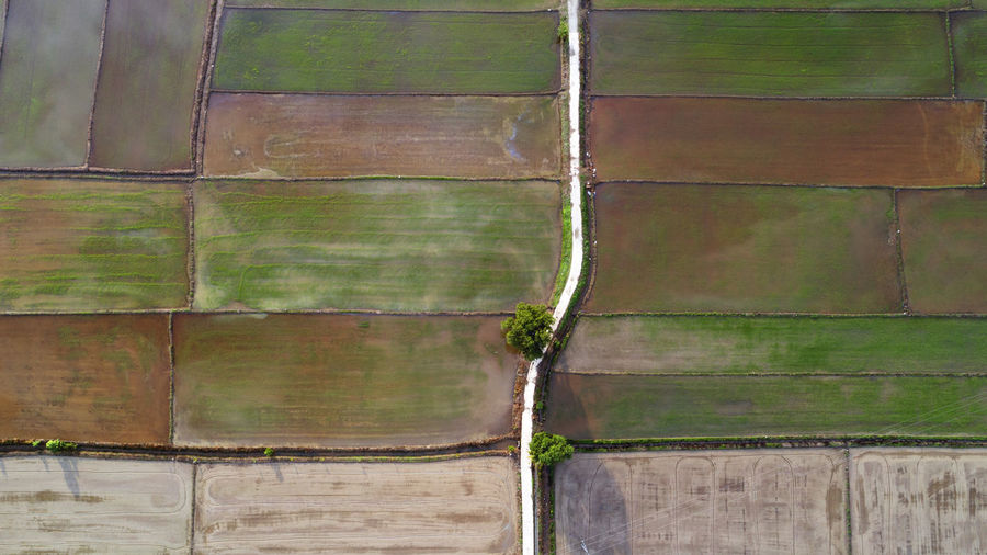 Beautiful farmland from aerial view. Backgrounds Close-up Day Full Frame Green Color Growth Landscape, Agriculture, Farmland, Field, Rural, Land, Farm, Nature, Green, Plant, Grass, Crop, Scene, View, Background, Aerial, Food, Season, Outdoor, Organic, Natural, Farming, Growth, Harvest, Fresh, Country, Earth, Plantation, Cultivate, Agricultural,  Nature No People Outdoors Pattern Wood - Material