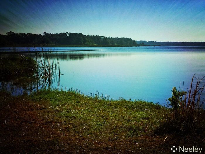 Lake Tranquility Beauty In Nature Outdoors Clear Sky Landscape Nature Florida Lakemaryjane