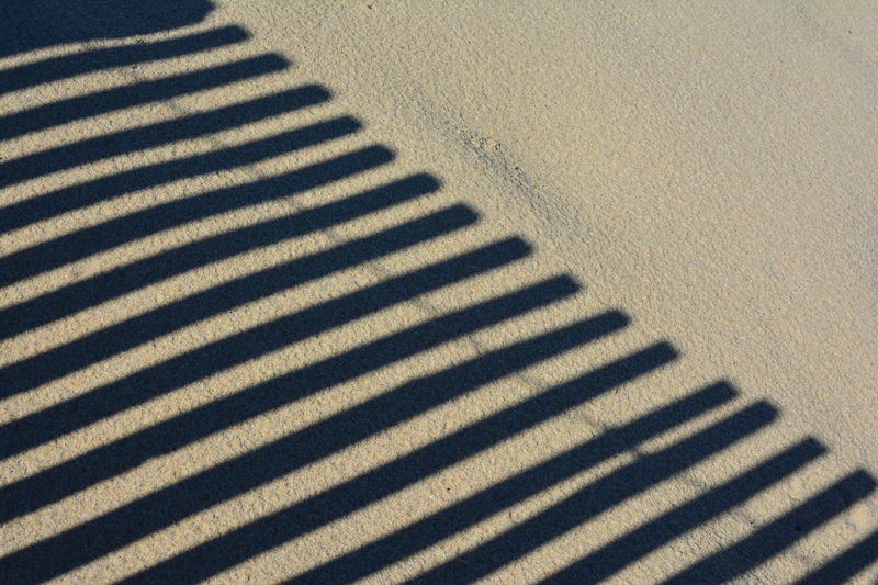 Partly palisade shadow on the sand Backgrounds Beach Beachphotography Day Dune Gold Colored Idyllic In A Row Nature No People Outdoors Palisade Pattern Sand Sand & Sea Sand Dune Scene Shadow Shadow On Sand Shadows & Lights Striped Stripped Lights Summer Sunshine Textured