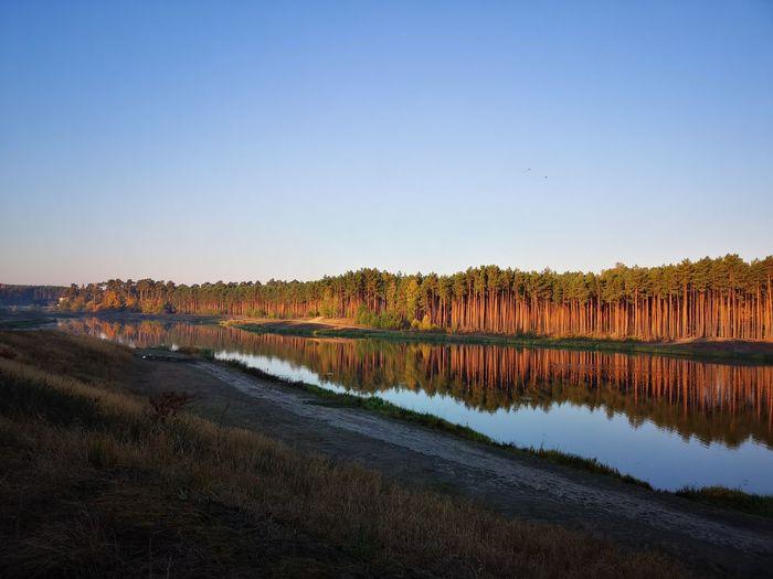 EyeEm Selects Water Flamingo Reflection Lake Sky Countryside Reflecting Pool Reflection Lake Scenics Calm Tranquil Scene Tranquility Idyllic