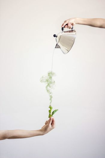 Make a wish. Moroccan Tea Mint Check This Out Green Living Creative Concept Conceptual 365 Drink Tradition Modern Way Of Life Think Create Creativity Showcase April