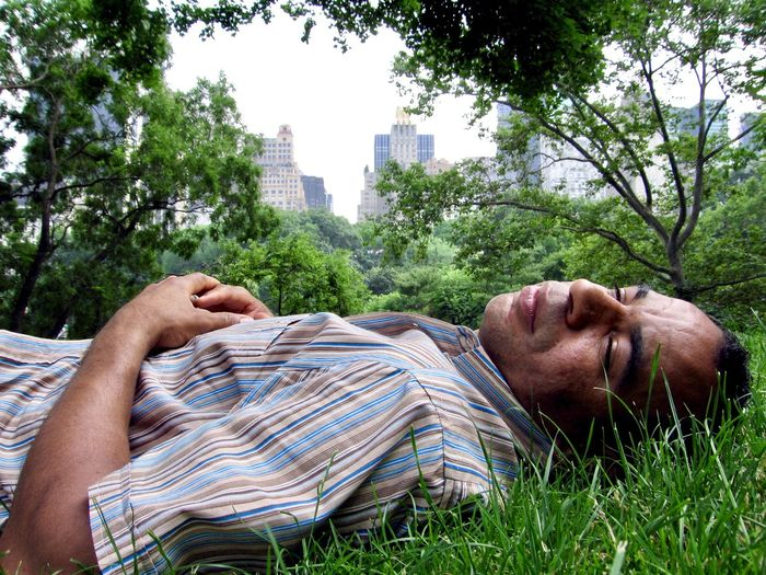Man Sleeping On Grass In City