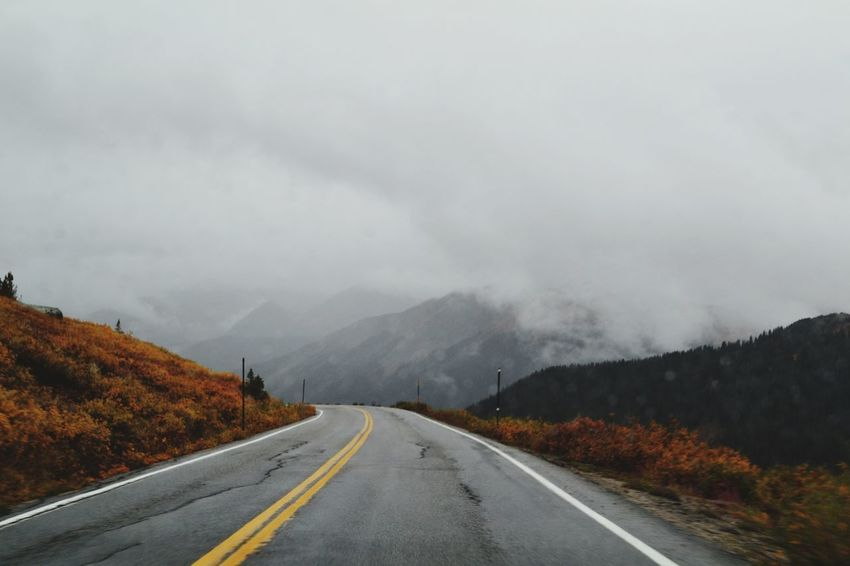 Travel Fall Color Aspen Fall Colors Colorado Colorado Photography Gloomy Day Road Symbol Direction The Way Forward Transportation Sign Road Marking Beauty In Nature Sky Diminishing Perspective Tranquility Nature