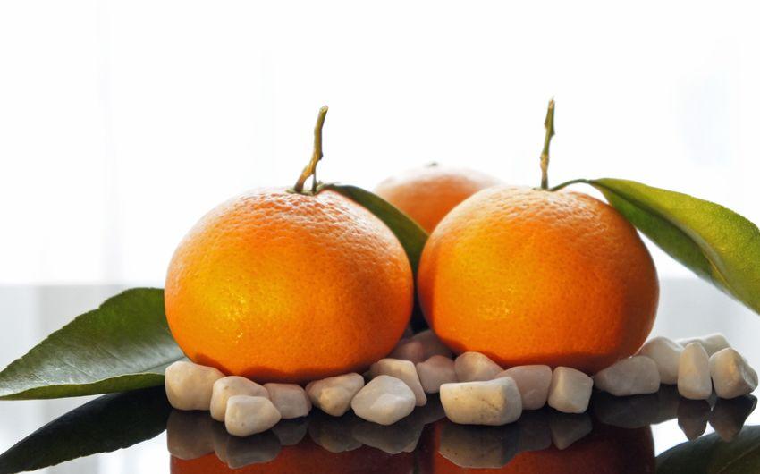 Green Orange Vitamine Zitronen Citrus Fruit Citrusfrüchte Clementinen Close-up Food Food And Drink Freshness Fruit Fruits Gesund Healthy Eating Healthy Lifestyle Leaf Limetten Mandarinen Orange - Fruit Orange Color Vitamin Vitamin C White Background Yellow
