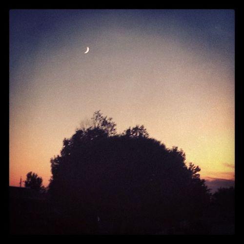 AZ Arizona Azsunset Holbrook holbrookaz mclawsrd boonies country crescentmoon moon sky scenery trees