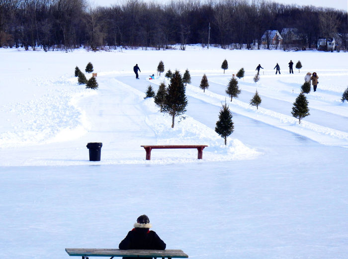 Rear view of man sitting on bench at snow covered field