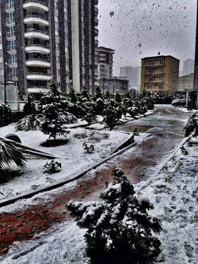 Kar Samsun Snow Cold Winter