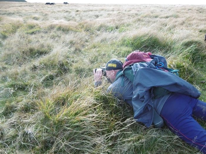 Brecon Beacons Different View Point Exploring New Ground Fan Y Big Photographing Wild Ponys Wales Adventure Backpack Beauty In Nature Day Field Grass Landscape Leisure Activity Lifestyles Lying Down Nature One Person Outdoors Photography Real People