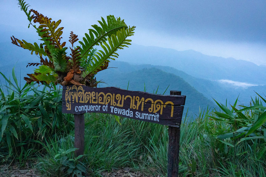 Communication Mountain Nature Plant Beauty In Nature Sign Text No People Grass Landscape Growth Scenics - Nature Day Information Sky Environment Western Script Tranquility Field Green Color Guidance Outdoors
