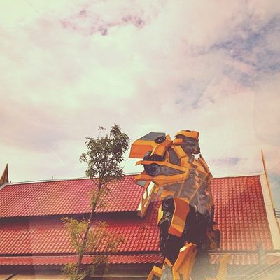ดูมั่วๆนะ Morning Working Thailand Thaionly Market Sky Robot
