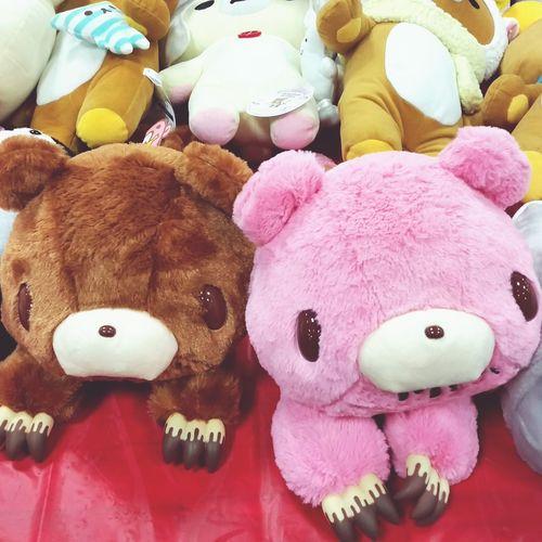 Plushies Plushtoy KAWAII Kawaii *--* Gloomy Bear Bear Cute Check This Out Taking Photos Hanging Out