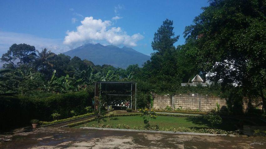 Home sweet home 💕 Mountain View Gunung Salak Garden Photography Garden Mountain