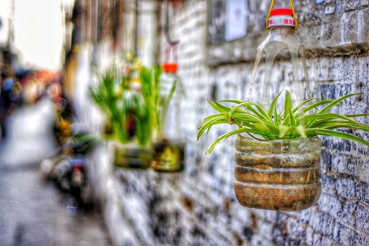 Old town,Yangzhou,China SonyNEX5R People Photography Streetphotography Hello World First Eyeem Photo Photography Light And Shadow 🌷 Flowers 🌹 Traveling