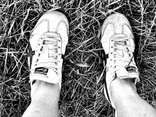 Human Body Part Human Leg Low Section Human Foot Real People Shoe Lifestyles Standing Blackandwhite Sneakers Walking