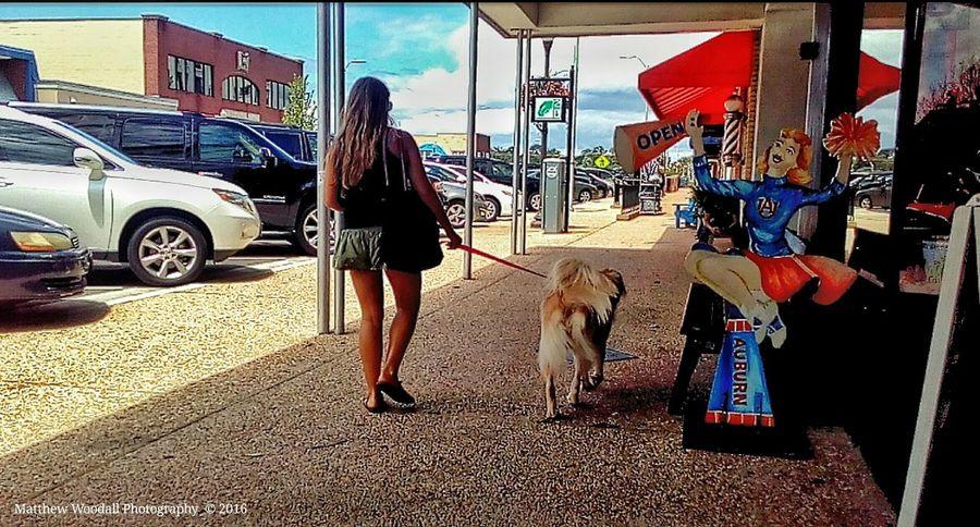 'Dog wall afternoon' Sidewalk Photograhy Street Photography Auburn, Alabama Auburn University College Life College Town Dogs Of EyeEm Dogwalk Dog Walking Dog Love Walking The Dog Snapseed Android Photography